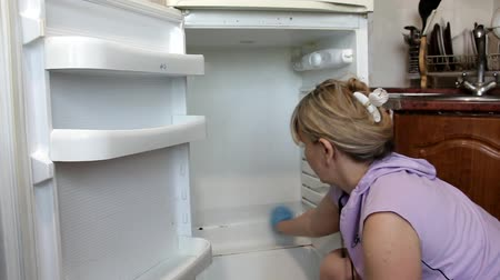 within : a woman in blue latex gloves diligently wipes a dirty refrigerator from inside
