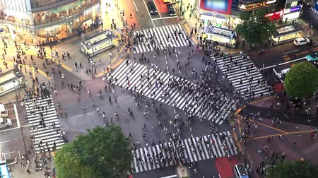 encruzilhada : Shibuya pedestrian crossing also known as Shibuya scramble