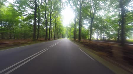 asphalt road : Driving footage on a European country road Stock Footage