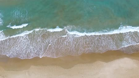 dominikana : Aerial footage of a tropical beach Wideo