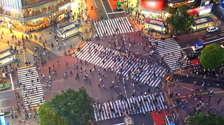 lapse : Shibuya pedestrian crossing also known as Shibuya scramble