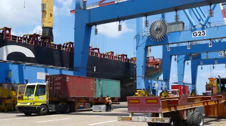 shipping : Time lapse - International Container ship unloading containers on service trucks at Haifas international port. Stock Footage