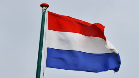 голландский : The Netherlands (Holland) - National flag waving in the wind. Стоковые видеозаписи