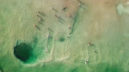 flutuador : Top down aerial footage of people floating in the salty water of the Dead Sea, Israel.
