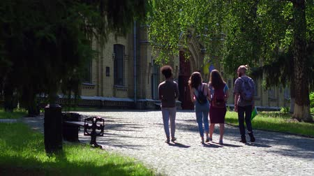 latinamerican : Rear view of students slowly walking in college park. Stock Footage