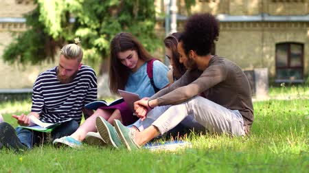 latinamerican : Multiethnic students sitting on lawn discussing home tasks.