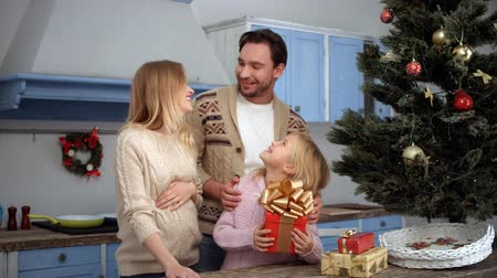 father christmas : Happy family celebrating Christmas and New Year all together. Father hugging his wife and daughter. People smiling while staying near New Year eve or tree. Stock Footage