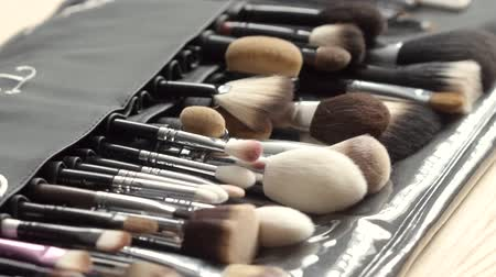 aplikatör : Set of brushes for professional makeup artist work. Beauty concept.