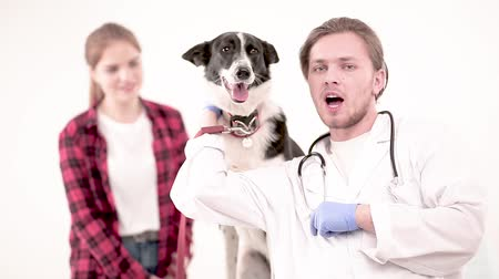 veterinário : Happy vet with funny mongrel posing on camera in vet office. Dog owner standing behind.