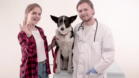 latino americana : Vet doctor and female dog owner standing with funny mongrel and posing on camera. Vídeos