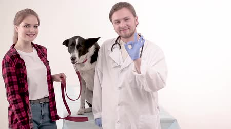 latino americana : Handsome young vet in white gown standing at dog and owner and showing OK. Pet care concept.