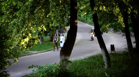 ağaç gövdesi : People walking and riding motorbikes down park road. Video taken from behind green trees of people taking walk and riding mopeds on road in park.
