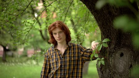 redhair : Nice Young Man In Checked Shirt Stands Near The Tree. Smiling Ginger Guy In Casual Cloth Leans On The Tree. Stock Footage