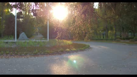 atletický : Beautiful Sunshine Lightens Green Park. Brunette Man Runs By Road. Healthy Lifestyle. Morning Fitness.
