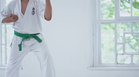 каратэ : Figure Of Tall Karate Man In White Kimono And Green Belt During Training In Gym. White Window Background. Стоковые видеозаписи