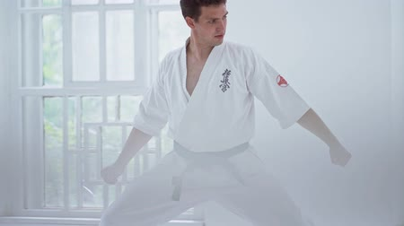 каратэ : Handsome Martial Art Trainer In Defense Position During Workout.Having Tensed Body. Karate Concept. Стоковые видеозаписи