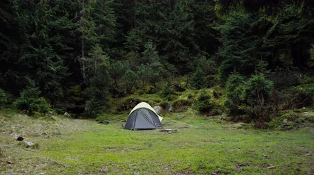 A Gray Tent Stands In A Beautiful Wild Forest. Camping Outdoors In Nice Weather. Travel And Tourism Concept Video