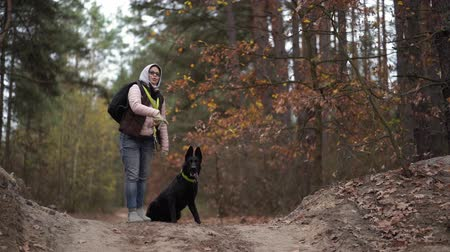 catch : Woman Is Training Her Active Black Shepherd Dog. The Female Is Throwing Away A Stick And The Dog Runs To Catch It.