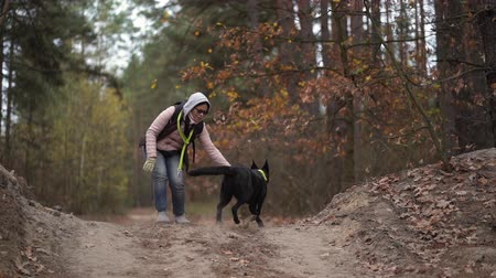 atmak : Woman Is Training Her Active Black Dog. The Female Is Throwing Away A Stick And The Dog Brings It Back To The Owner.
