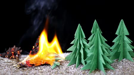 miniatűr : fire in paper forest. nature disaster