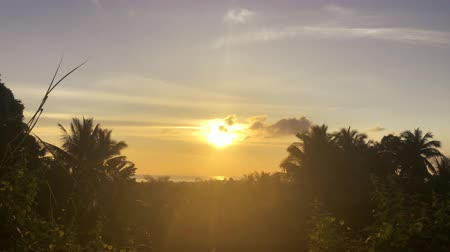 tropy : accelerated video of sunset, sunrise in jungle. rainbow on the horizonte. time lapse clouds Change sky