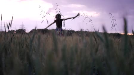 The girl is run along the wheat field nature. Beautiful girl in a multi-colored dress running wildlife happiness hands on the side at sunset and the blue sky. Dostupné videozáznamy