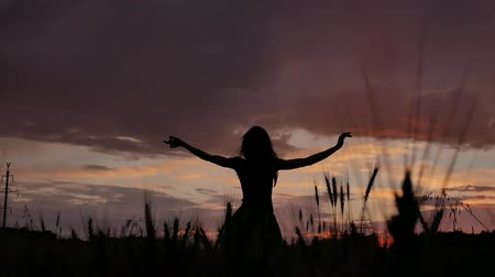Silhouette girl in a multi-colored dress enjoy dancing in a good mood at a wheat field in the evening Dostupné videozáznamy