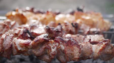 espetos : Meat on skewers roast on handheld barbeque grill outdoor close up shashlik