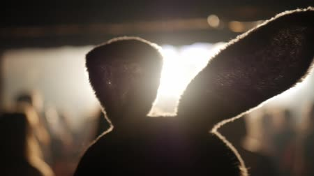 Silhouette of the head with hooked ears. Party concept. Slow motion Dostupné videozáznamy