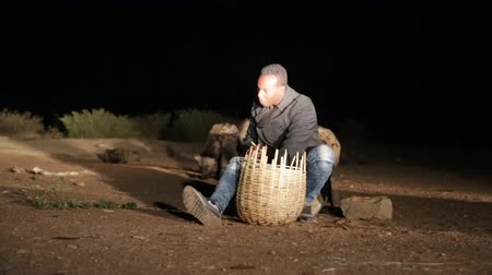 lobo : ETHIOPIA, HARAR-CIRCA DECEMBER 2017 - unidentified tourist feeding the hyena