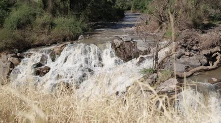 vodopád : in ethiopia africa the awash national park and the falls nature wild Dostupné videozáznamy
