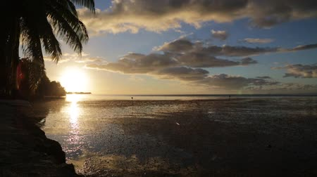 maldivler : in polynesia bora bora the sunset in the coastline and resort like paradise concept and relax Stok Video