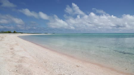 Полинезия : in polynesia rangiroa the pink sands of the coastline like paradise concept and relax Стоковые видеозаписи