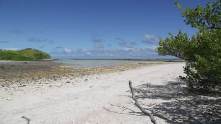 atol : in polynesia rangiroa the pink sands of the coastline like paradise concept and relax.