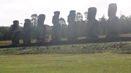 pedreira : in chile rapa nui the antique and mysteriuos muai statues symbol of an ancien culture