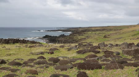Полинезия : in chile isla de pasqua rapa nui the coastline in the wind nature and wild