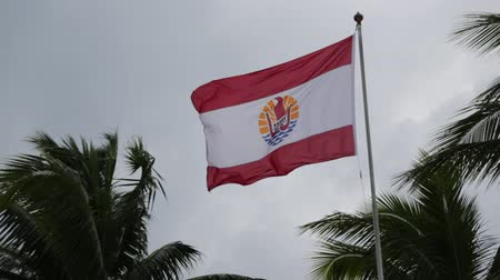 Полинезия : in polynesia the waving flag in the cloudy sky and rain.