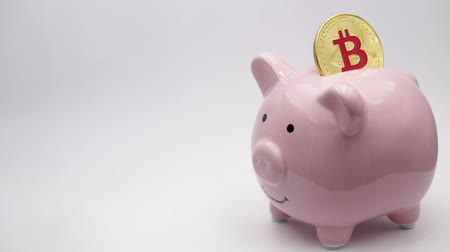 failures : piggy bank and bitcoin like concept of money and investment