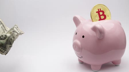 dollars : piggy bank and bitcoin like concept of money and investment