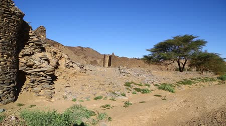 defesa : in africa sudan berenice the antique temple of the black pharaohs in the middle of the desert Stock Footage