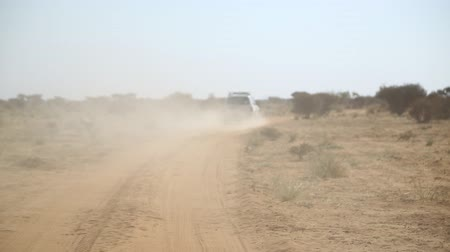 svatozář : in south africa the street in the nubian desert concept of wild and adventure