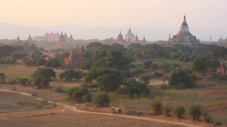 shwezigon : The plain of Bagan at sunset, Bagan, Myanmar Stock Footage