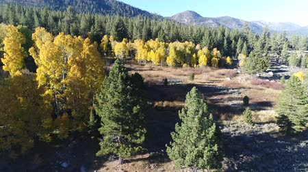 interseção : Hope Valley is one of the better places to see fall colors in the Sierra. Highways 88 and 89 intersect near the north end of the valley.