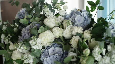 ortanca : Big flowers composition with blue and white flowers Stok Video