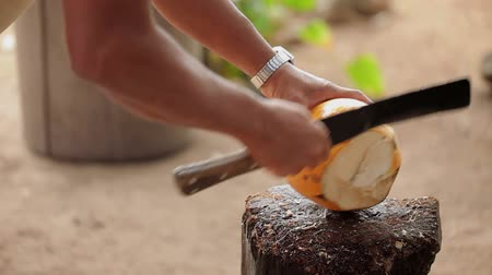 machete : Man with machete hacking coconut outdoors