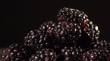 antioxidant : Blackberries on black background close up isolated Stock Footage