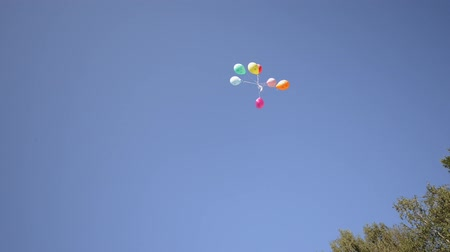 Colourful balloons flying to the sky at sunny day