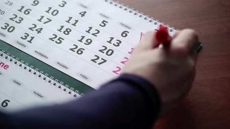 organizatör : Crossing weekend dates in calendar with red pen Stok Video
