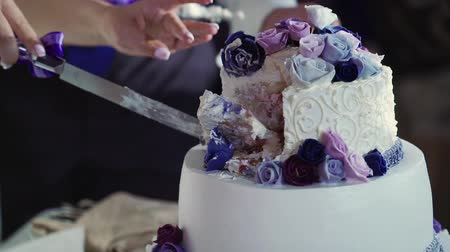 Bride and groom cutting pieces wedding cake