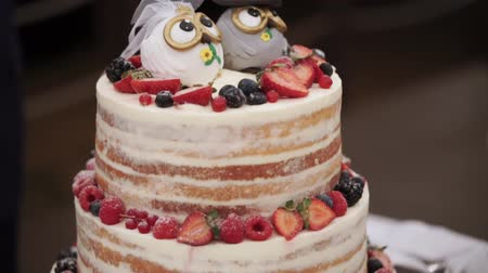 wed : Wedding celebration cake in rustic style with owls figures on top closeup